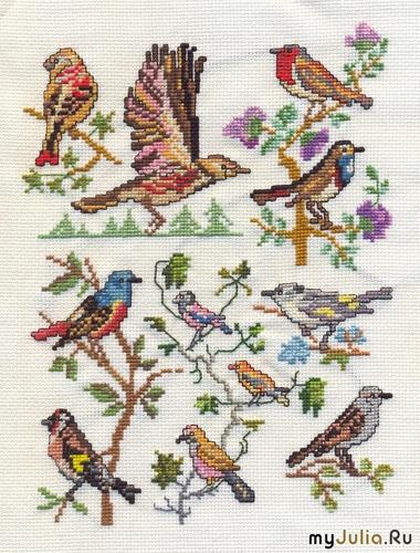 Птицы - вышивка крестом
