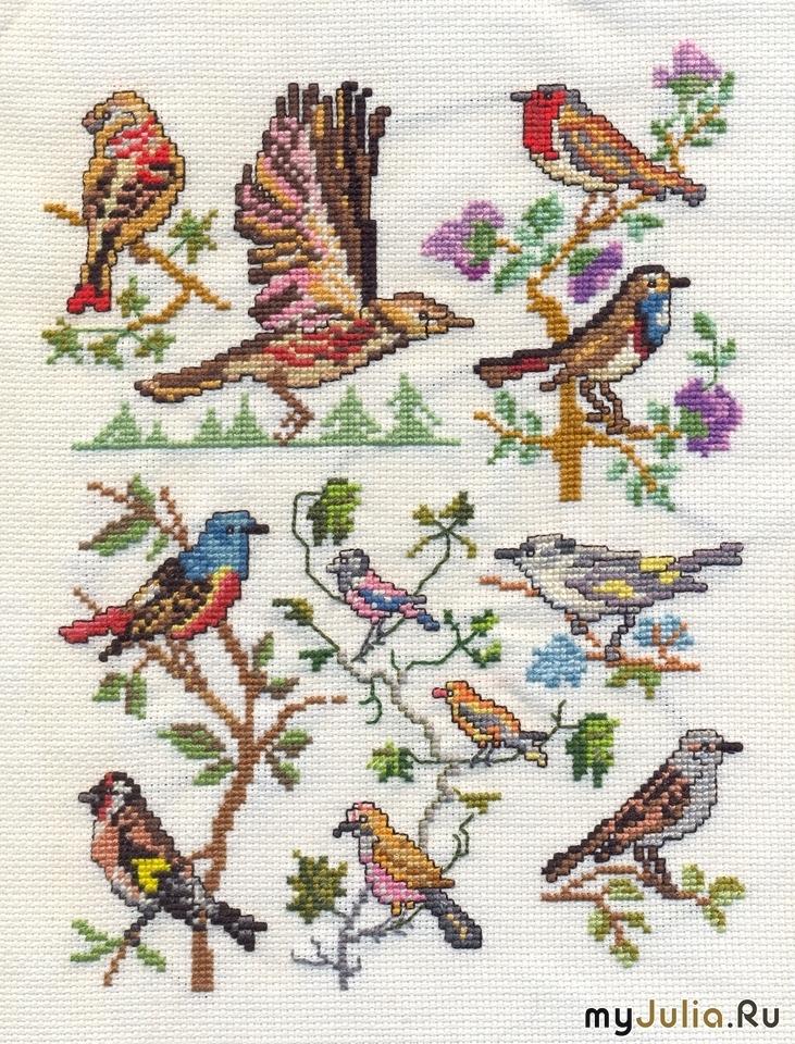 Вышивка крестом фото птицы