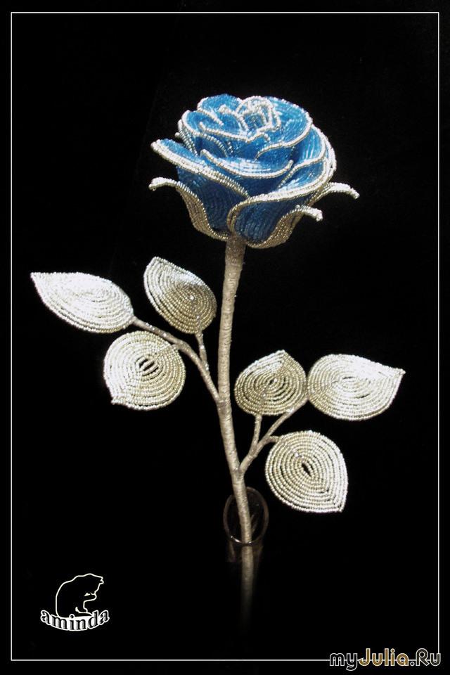 Синяя роза