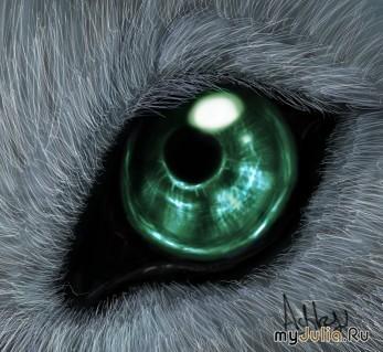 скачать торрент глаз волка - фото 5