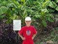 Бананы в Крыму тоже растут