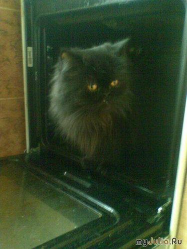Инспекция духовки