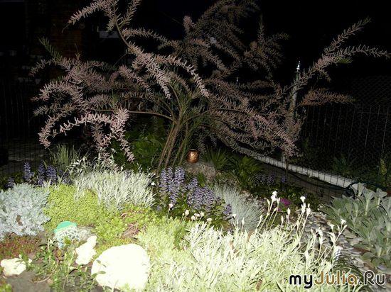 Альпийская горка с бисерным деревом ночью