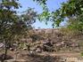 Священный холм Говардхан - святое место Индии