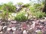 Священный холм Говардхан - святое место Индии - особый камень