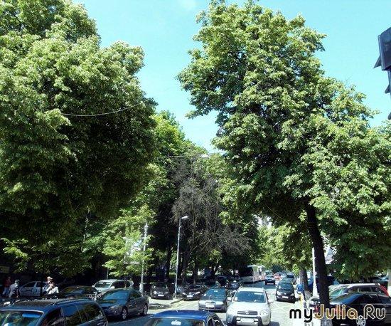 улица Прорезная