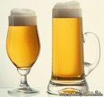 Какая польза от пива?
