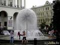 После дождя можно и в фонтане покупаться...