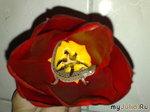Фанфан-тюльпан или семейный бизнес