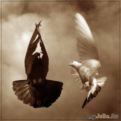 Мир любовь и красота стихи