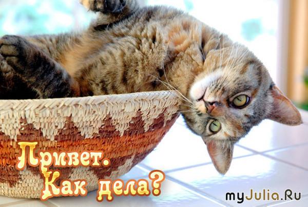 http://www.myjulia.ru/data/cache/2009/07/16/152431_4937-550x500.jpg