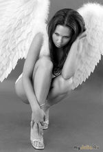 Поселок ангелов