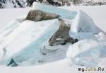 Исповедь тающей льдинки...