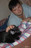Испытание котом