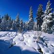 Времена года: Волшебница - зима