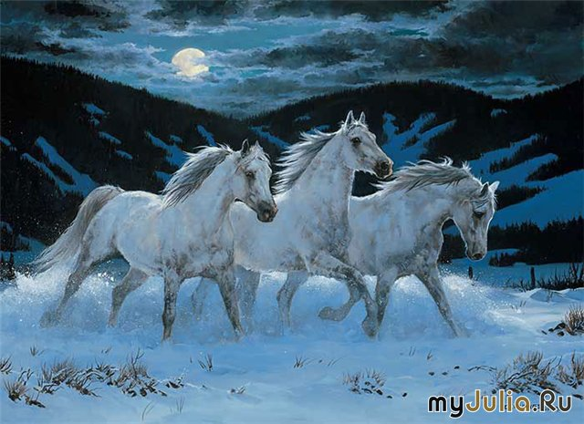 Картинки про лошадей зимой