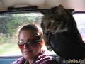 Кити едет на отдых