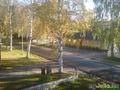 Вид из окна-Осень