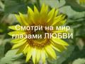О Вере, о Боге, о Любви