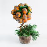 Композиция «Мандариновое дерево»