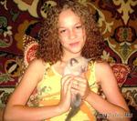 Вы любите кошек?