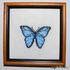 Бабочка №5