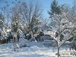 Зима в саду: забот полон рот