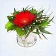 Цветы и гвозди в консервной банке