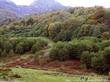 Красная поляна, рафтинг, горы.