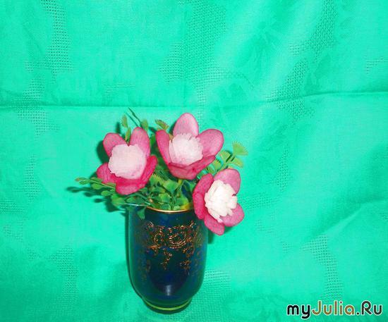 Цветок шизандра