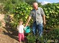 Дедуля, отличный урожай собрали!
