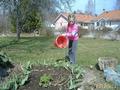 я люблю работать в саду