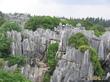 Фантастический реальный сон или горы Улинъюань