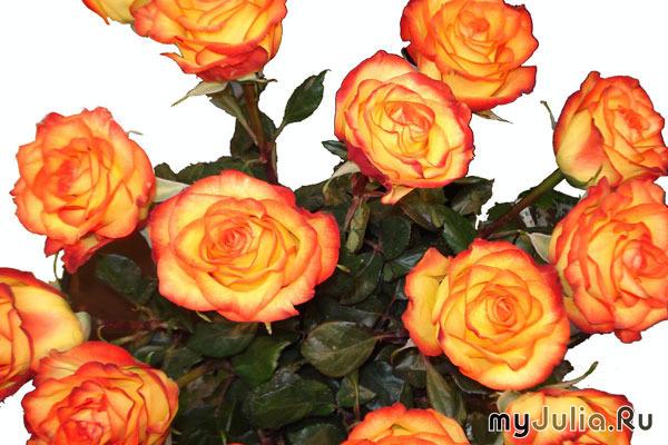 К чему снится букет оранжевых роз