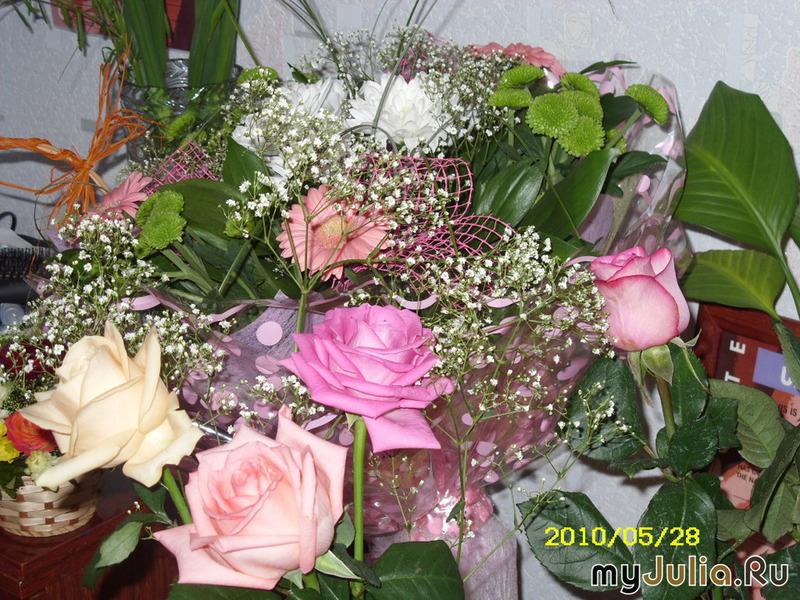 картинки для кати цветы