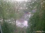 Ура!!! У нас дождь!