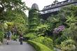 Wellington Botanic Garden.