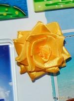 Зацвел холодильник атласными розами