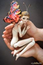 Бабочка или?..