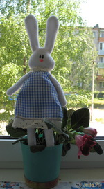 Мой первый заинька)))