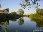 Прогулка на речку