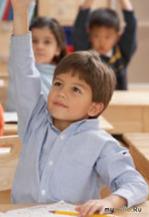 Частное образование: плюсы и минусы…