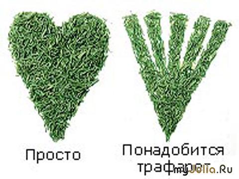 intimnaya-strizhka-forma