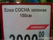 Великое русское слово?