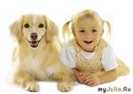 Дети и домашние животные - как быть?