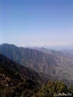 В горы, в горы!