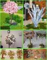 денежные деревья из сети 4