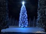 Новогодние праздники - время чудес