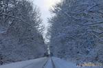 Все-таки Зима!