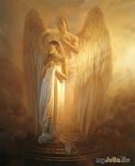Наши ангелы – хранители.